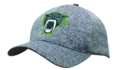 Picture of Headwear Stockist-3998-6Pnl Cationic Sports Jersey Cap