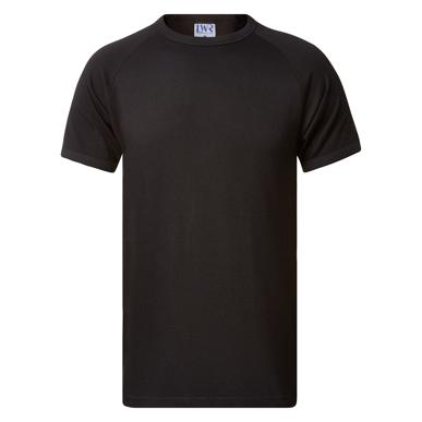 Picture of LW Reid-1180RT-Healy Crew Neck Raglan T-Shirt